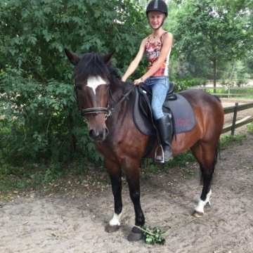 Mijn eigen pony Benji