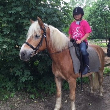 Penny's Pony Plezier 5