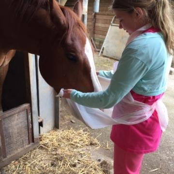 Penny's Pony Plezier 6